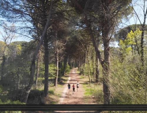 Ra-Mi.Ma off road: il video trailer che ti fa venir voglia di correre in natura!